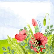野花のイラスト
