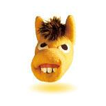 怖い馬の顔。