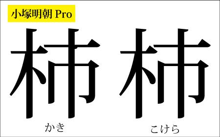 小塚明朝Pro