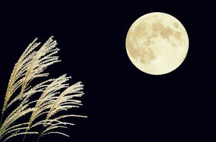 中秋の名月 月 十五夜